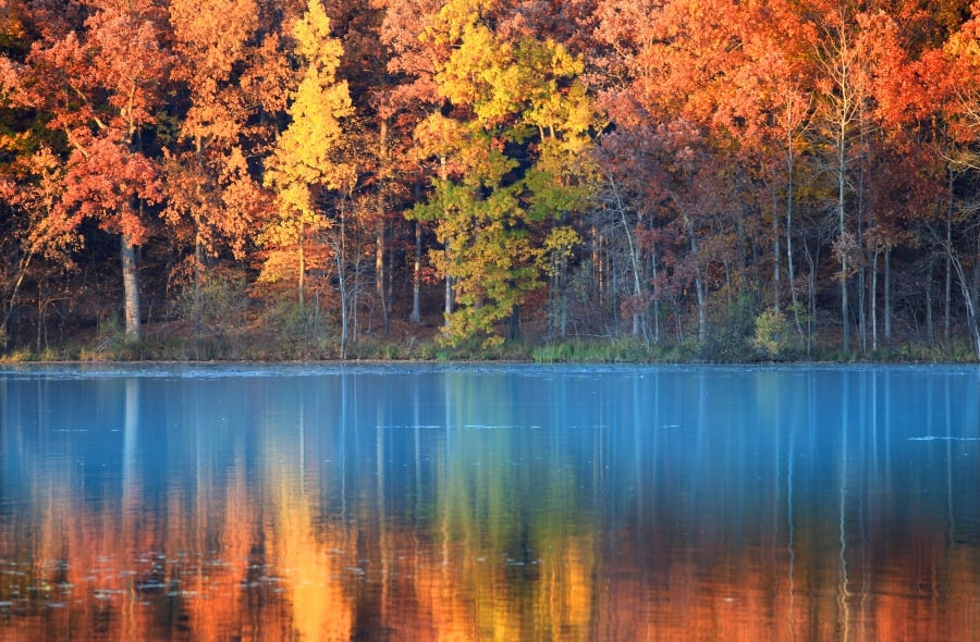 fall leaves reflected in a lake